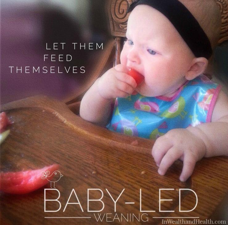 babyled weaning